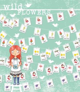 068-wa-wildflowers